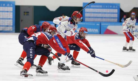 Хоккей с мячом 2019-2020 | Чемпионат России, переходы, расписание новые фото